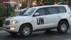 Video «Spezialisten beginnen mit Vernichtung von C-Waffen» abspielen