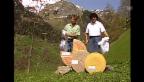 Video «Vreni Schneider und Franz Heinzer enthüllen Käse (Tagesschau vom 14.05.1992)» abspielen