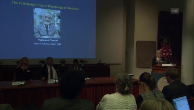 Video «Nobelkomitee erklärt Ohsumis Forschung (engl.)» abspielen