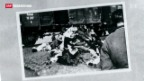 Video «Holocaust-Bilder werfen Fragen auf» abspielen