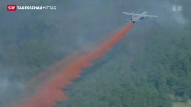 Video «Waldbrände in Colorado» abspielen