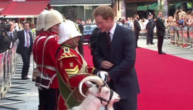 Video «Eine Umarmung und eine Ziege für Prinz Harry» abspielen