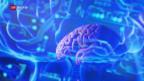 Video «FOKUS: Künstliche Intelligenz – mehr als ein Hype?» abspielen