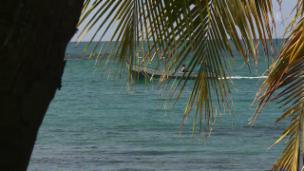 Link öffnet eine Lightbox. Video Costa Rica – Paradies zwischen zwei Ozeanen abspielen.