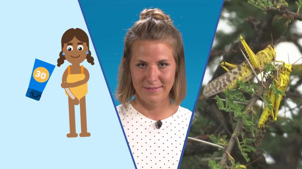 Kinder News: Maskenpflicht, Heuschreckenplage und Baderegeln (Staffel 1, Folge 6)