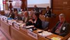 Video «Folgen der Masseneinwanderungsinitiative für Auslandschweizer» abspielen