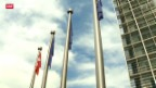 Video «EU-Botschafter gegen Ventilklausel» abspielen