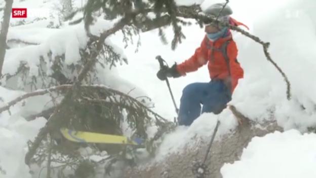 Video «Schweiz aktuell vom 17. Januar 2013» abspielen