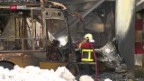 Video «Schweiz aktuell vom 17.01.2019, 19:00» abspielen