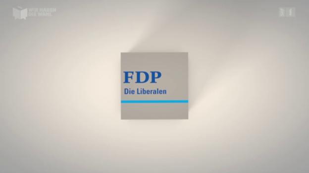 Video «Die FDP: Die Bilanz» abspielen
