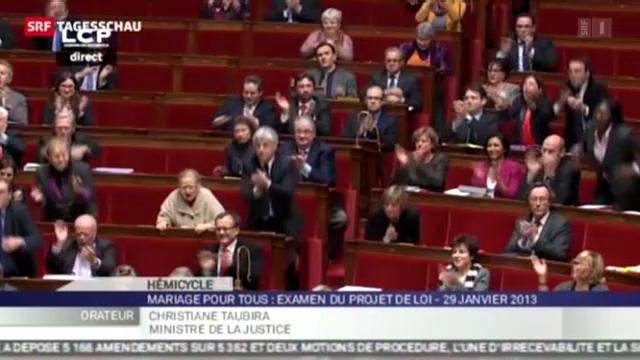 Debatte über Homo-Ehe in Frankreich