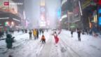 Video «Plausch im amerikanischen Schnee» abspielen