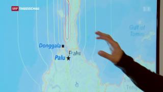 Video «Humanitäre Hilfe auf dem Weg» abspielen