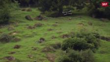 Link öffnet eine Lightbox. Video Drohnen ersetzen Bergführer abspielen
