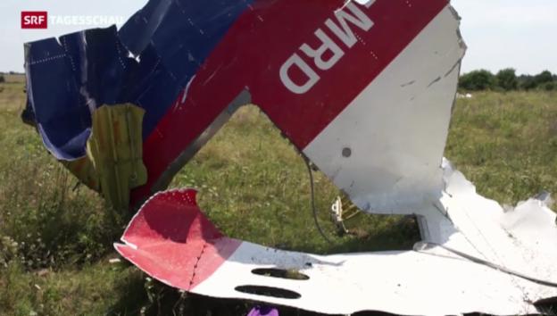 Video «Neue Wrackteile von MH-17» abspielen