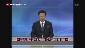 Video «Nordkorea wird konkret» abspielen