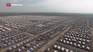 Video «UNO-Migrationspakt auch in der Schweiz unter Druck» abspielen