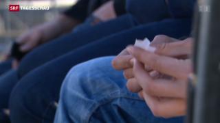 Video «Bern will Cannabis in Apotheken verkaufen» abspielen