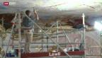 Video «Pinseln gegen den Zerfall» abspielen