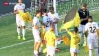 Video «YB in der Europa League eine Runde weiter» abspielen