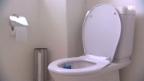 Video «Funny Science: Die Pizza auf der WC-Brille» abspielen