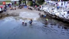 Video «Der härteste Triathlon der Welt – Tränen und Jubelschreie beim Norseman» abspielen