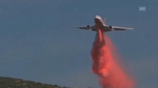 Video «Kalifornien kämpft gegen Buschfeuer (unkomm.)» abspielen