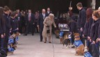 Video «Britische Royals: Auf den Hund gekommen» abspielen
