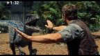 Video «Keine 3 Minuten: «Jurassic World»» abspielen