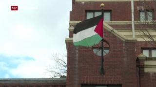 Video «Trump will Palästinenser-Vertretung schliessen» abspielen