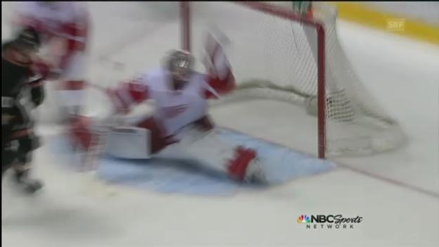 Video «NHL: Highlights Detroit - Anaheim» abspielen