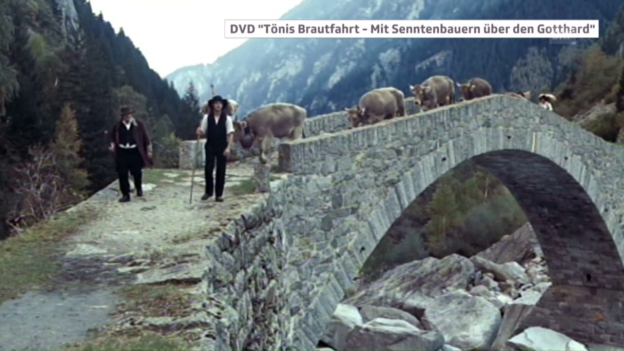 Kuhhandel über den Gotthard