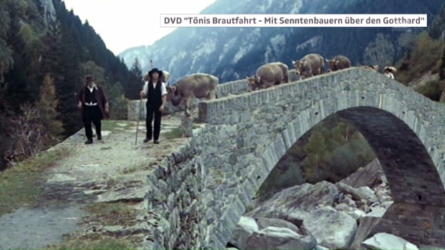 Video «Kuhhandel über den Gotthard» abspielen