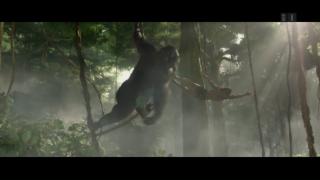 Video «Tarzan: Neues vom Waldmenschen» abspielen