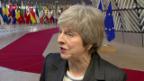 Video «Brexit Debatte – der Dauerbrenner» abspielen