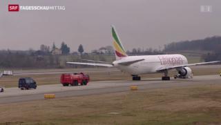 Video «Flugzeugentführung in Genf » abspielen