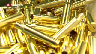 Video «Schweizer Waffenexporte im Kreuzfeuer» abspielen