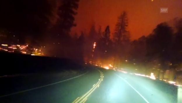 Video «Zahl der Brandopfer in Kalifornien gestiegen» abspielen