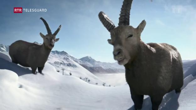Laschar ir video «La marca «graubünden» è dapi in onn en novs mauns»