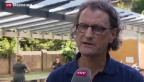 Video «Burkhalter will EU-Abstimmung in zwei Jahren» abspielen