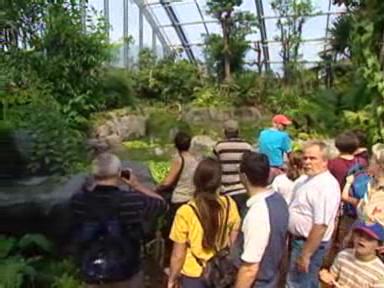 Video «Masoala-Besucher» abspielen