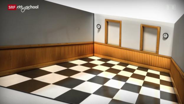 Video «Brain Games: Optische Täuschung (1/12)» abspielen