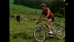 Video «Mountainbike-Verbot (1987)» abspielen