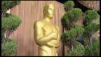 Video «News: Anwärter auf Oscars-Nominierungen» abspielen
