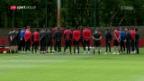 Video «Grosse Betroffenheit vor EL-Final» abspielen