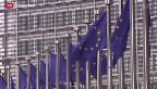 Video «EU geht gegen Google vor» abspielen