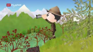 Video «Helveticus 2: Der Schweizerische Nationalpark (16/26)» abspielen