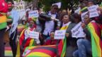Video «Mugabes Wahl zum WHO-Botschafter empört» abspielen