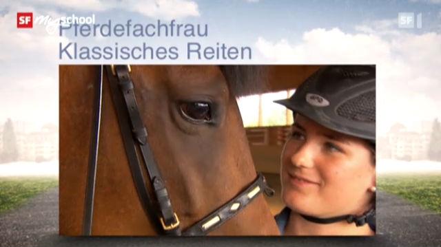 Berufsbild: Pferdefachfrau EFZ