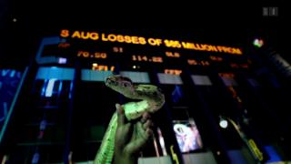 Video «Grüne Börse – Wie die Banken die Natur entdecken» abspielen